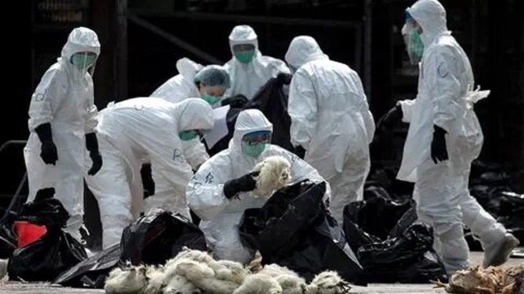 """""""كورونا"""" يصل دولة عربية ويسجل أول حالة إصابة"""